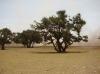 Maroc-2013_498