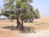 05-Agadir-07