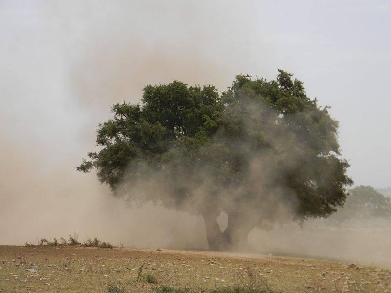 Maroc-2013_534A